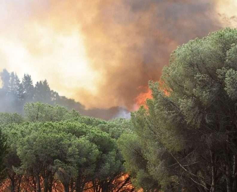 Caldo record scuote il sud, Sicilia e Calabria le più colpite. Nei prossimi giorni l'ondata al Nord